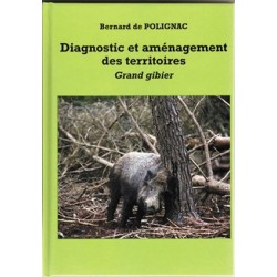 Diagnoctic et amenagement